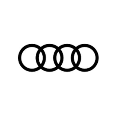 Kundenrefrerenz Audi